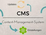 CMS- Vor- und Nachteile